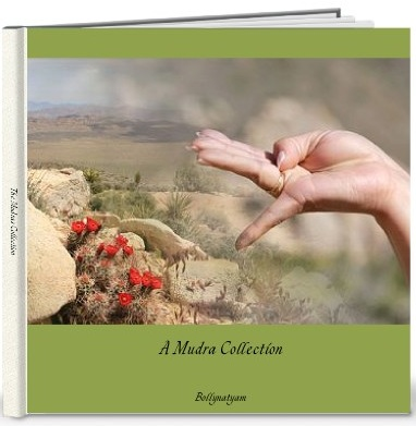 cover of mudra book